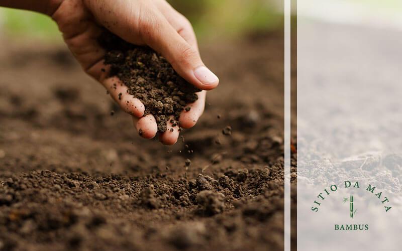 Adubações regulares - Como preparar o solo na primavera